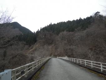 厳島湿生公園171011