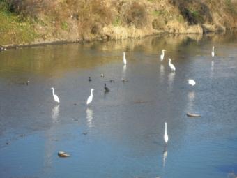 分岐松姫峠へ171014