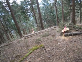 渡良瀬川に着いた171111
