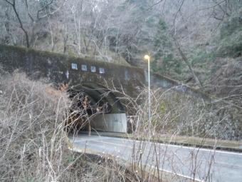 広い茅の草原171111