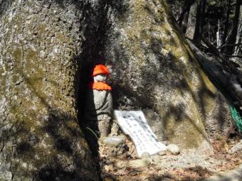 早川漁港171129