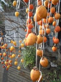 171202干し柿