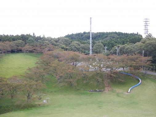 DSCN3460.jpg