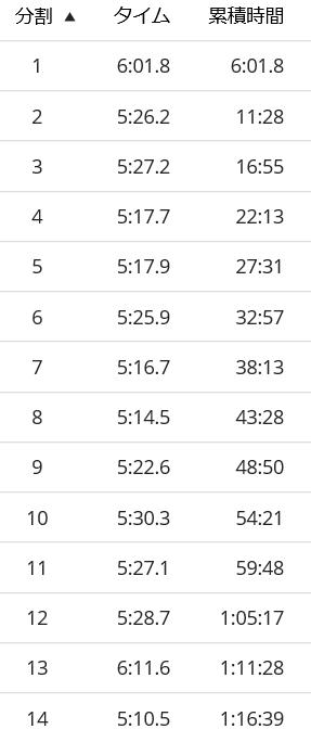 ホノルルマラソンラップ1