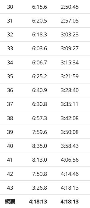 ホノルルマラソンラップ3