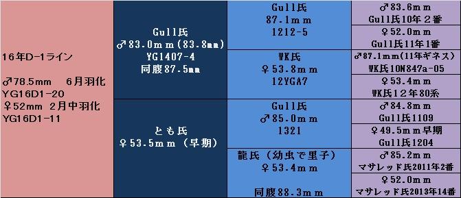 YG16D-1PURE.jpg