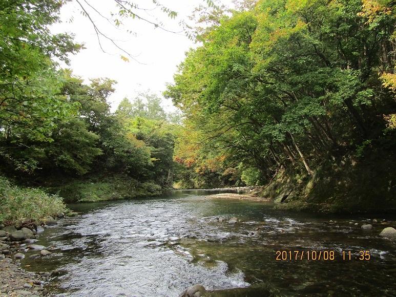 10月8日、真瀬川2