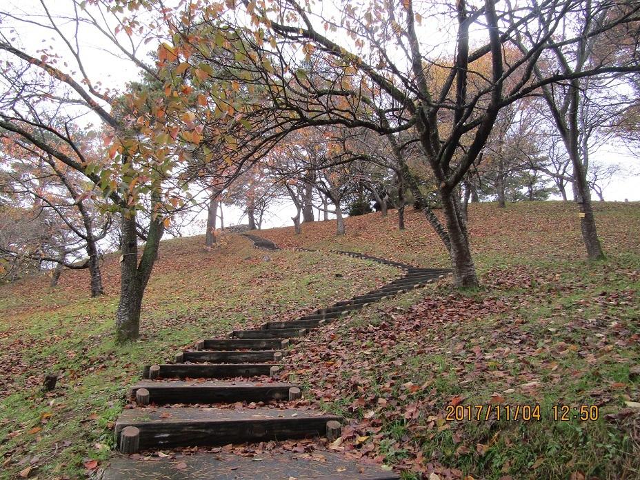 枯葉の階段