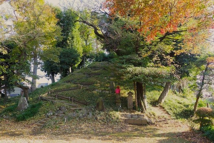 「中里富士」―東京都指定有形民俗文化財・清瀬市指定有形文化財―