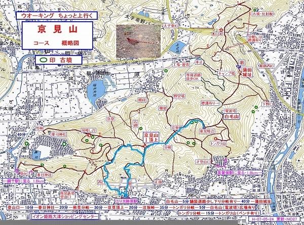 kyoumi1_2017121216080891b.jpg