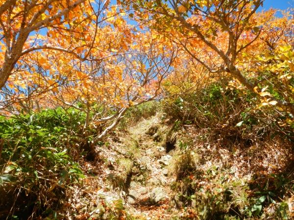 谷川岳 118