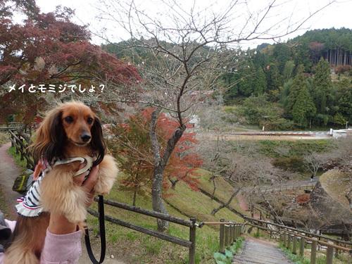 harutoaki13.jpg