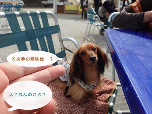harutoaki2.jpg