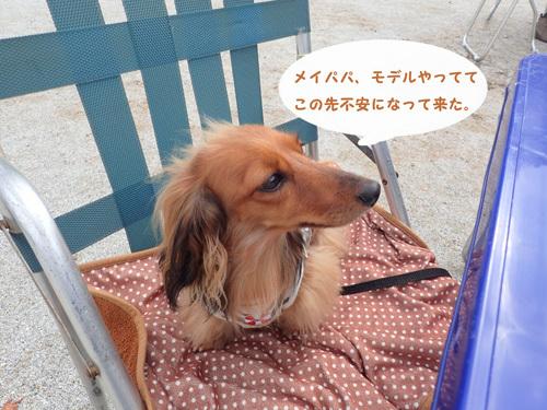 harutoaki3.jpg