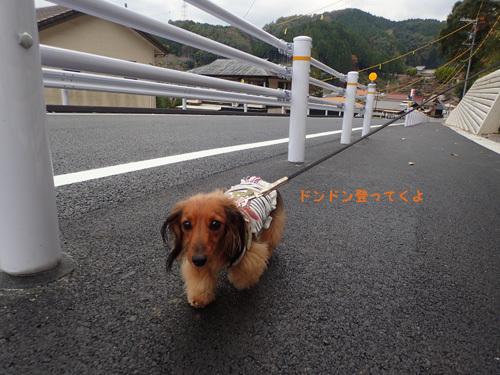 harutoaki49.jpg