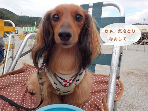 harutoaki5.jpg