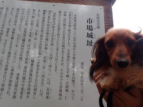 harutoaki69.jpg