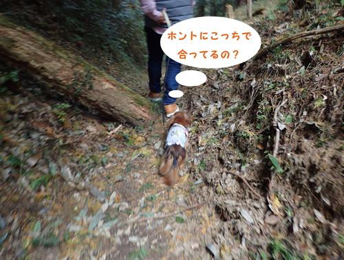 harutoaki77.jpg