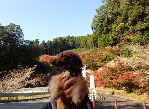 harutoaki89.jpg