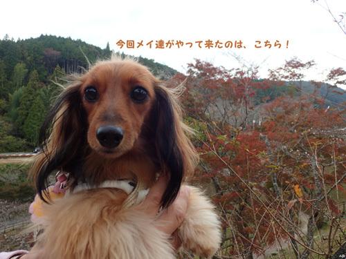 harutoaki9.jpg