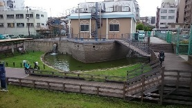 浅草に05