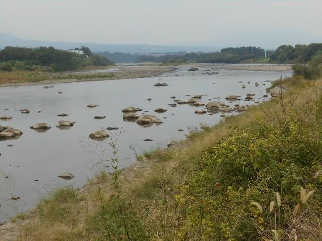 DSCN31311002大渡橋左岸上流.jpg