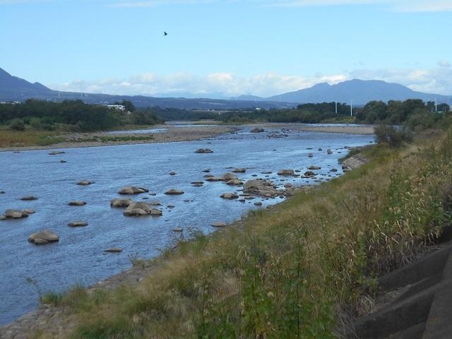 DSCN31381004大渡橋左岸上流.jpg