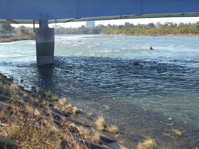 DSCN33501106大渡橋下.jpg