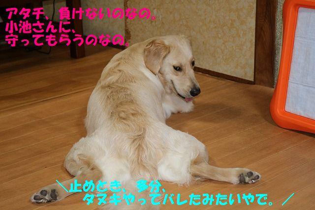 IMG_9039.jpg