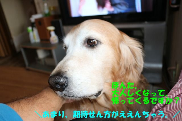 IMG_9165_201710202318044c1.jpg
