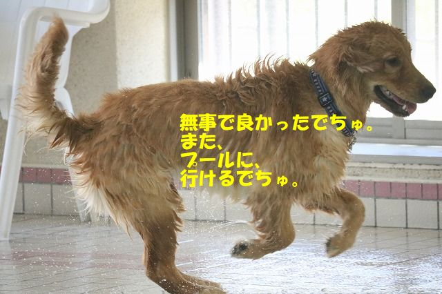 IMG_9844.jpg