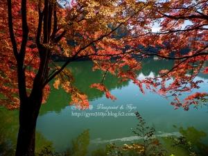 南伊奈ヶ湖 I