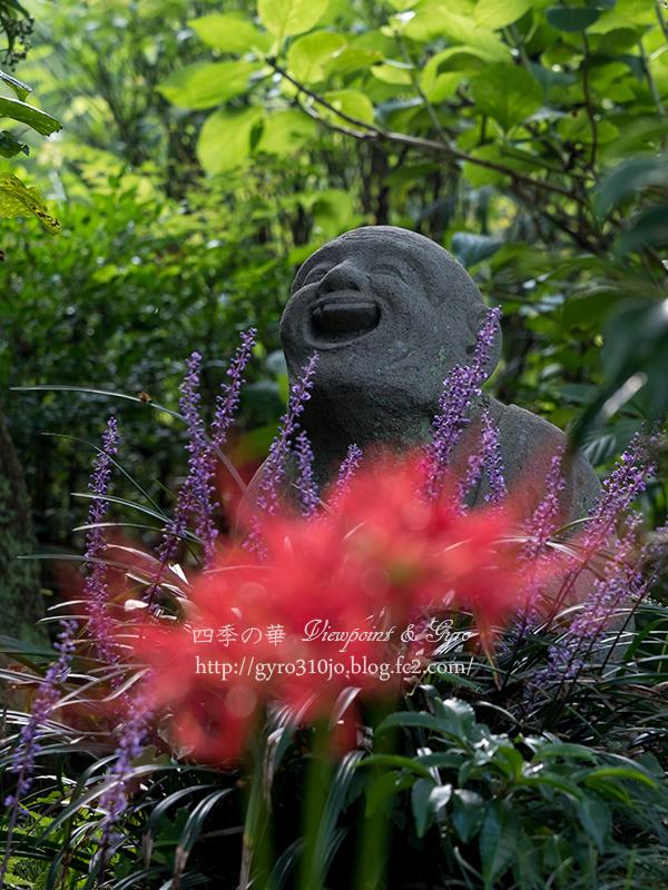 浄慶寺の彼岸花 E
