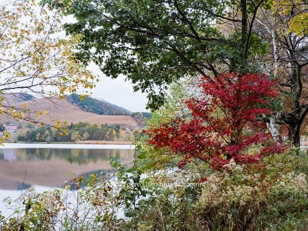 白樺湖 I
