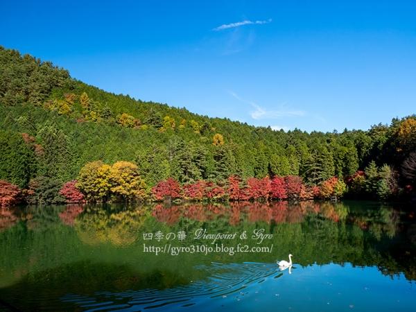 南伊奈ヶ湖 M