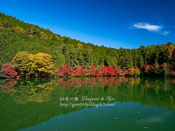 南伊奈ヶ湖 A