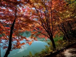南伊奈ヶ湖 J