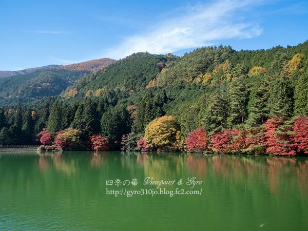 南伊奈ヶ湖 L