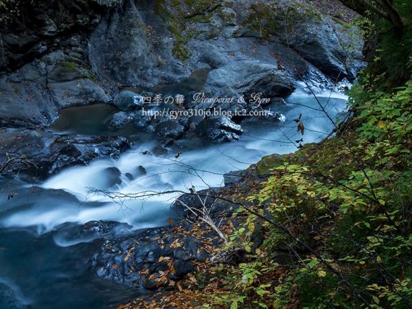 大柳川渓谷 F