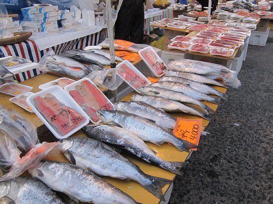 紅サケ、銀鮭