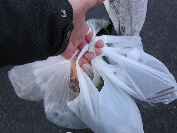 八戸朝市の買い物