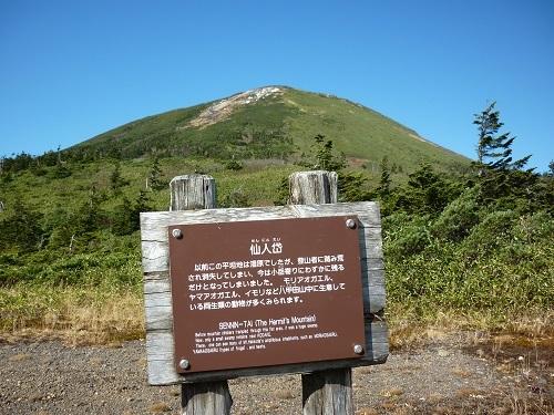 yakusi026.jpg