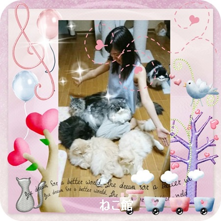 blog_20171007111224b64.jpg