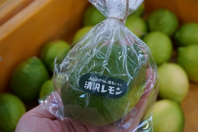 レモン青 (1)