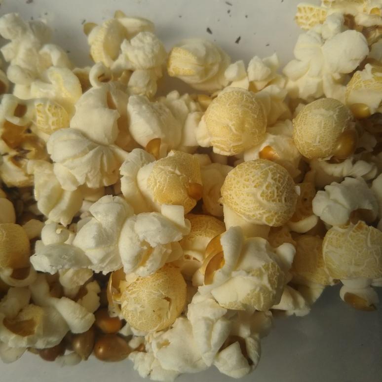 Popcorn 20170929