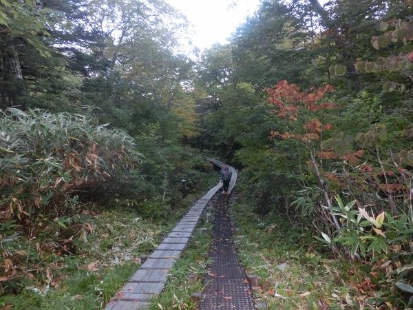 山の鼻への木道