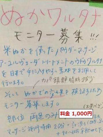 ぬかワルタナモニター1000円
