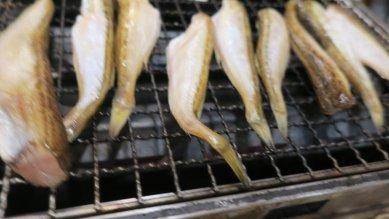 焼き魚(ししゃもか)