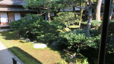 中庭・万年青の縁庭園
