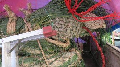 道念稲荷神社の蛇onトラック